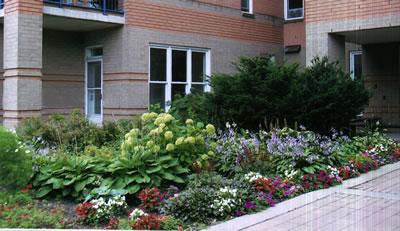 One of Coop Voisins' front gardens